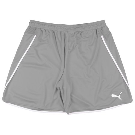 PUMA Speed Shorts Mesh Bottoms Casual Gym Exercise Athleisure Sports Mens Grey