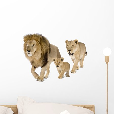 Lions Family Front White Wall Decal Sticker, Wallmonkeys Peel & Stick Vinyl Graphic (18 in W x 14 in H)