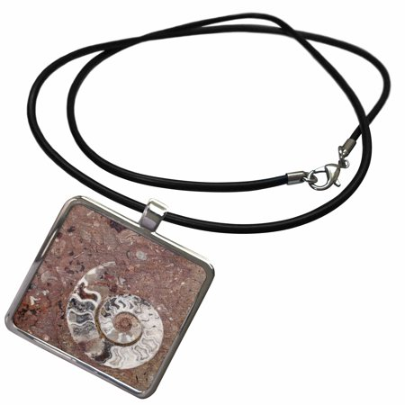 3dRose Morocco, Erfoud. Details of ammonites, and other fossils. - Necklace with Pendant