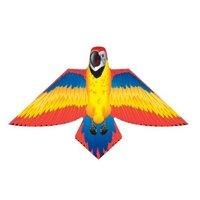 Brainstorm Birds Of Paradise Red Parrot Kite