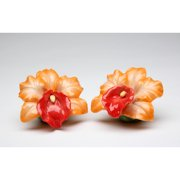 Cosmos Gifts Orange Orchid Salt and Pepper Set