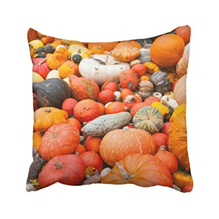 Squash Varieties (WinHome Decorative Pillowcases Variety Of Squash For Sale Germany Throw Pillow Covers Cases Cushion Cover Case Sofa 18x18 Inches Two Side )
