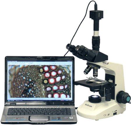 AmScope 40X-1600X Full Size Compoud Microscope + 1.3MP Digital Camera