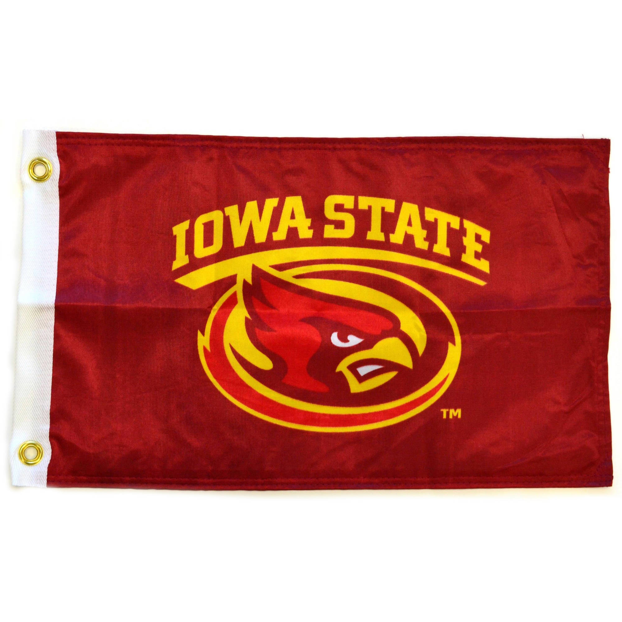 "Flagpole To Go 14"" x 15"" Iowa State Golf Cart Flag"