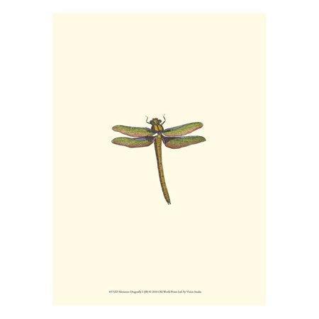 Miniature Dragonfly I Print Wall Art By Vision Studio (Miniature Dragonfly)