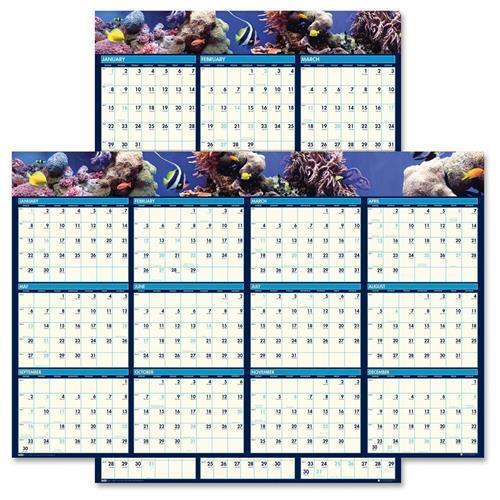 "House of Doolittle Earthscapes Sea Life Scenes Reversible/erasable Wall Calendar, 24"" X 37"", 2016"