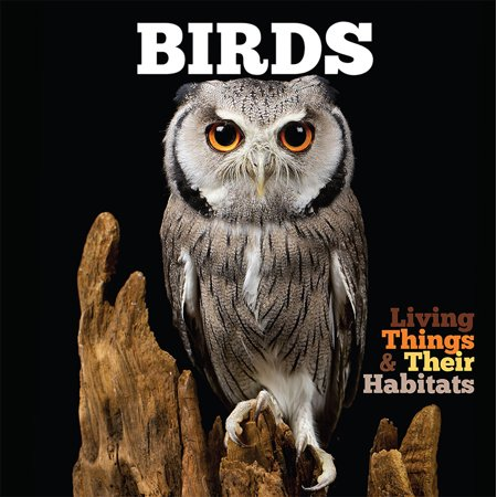 Birds (Living Things And Their Habitats Year 4)