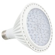 American Lighting LLC LED Light Bulb