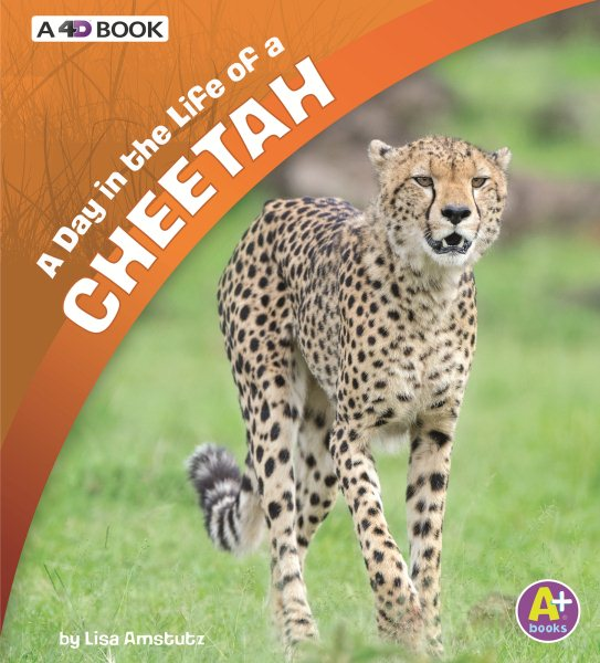 Day in the Life: A Day in the Life of a Cheetah (Paperback)