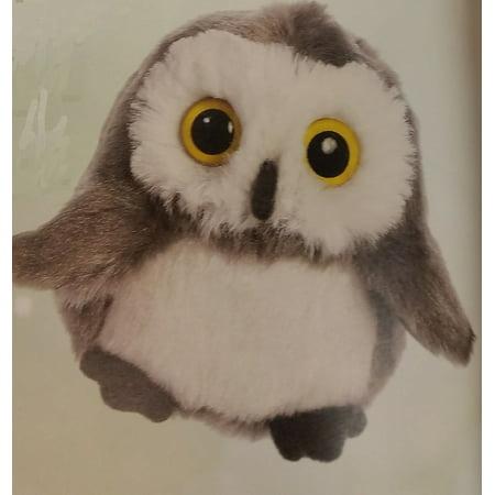 Whohoots Sound Owl - Grey (Grad Owl)