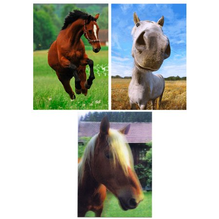 HORSES - 3D Lenticular Postcard Greeting Cards - 3 Different Pictures of (Valentine Greeting Postcard)