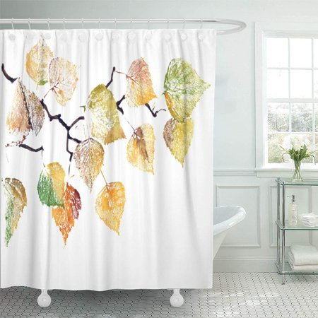PKNMT Silver Leaf Watercolor Painting of Bright Autumn Branch Birch Tree on White Brown Waterproof Bathroom Shower Curtains Set 66x72 inch ()