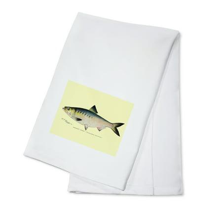 Hickory Shad, Denton Fish Print (100% Cotton Kitchen Towel) (Hickory Tea)