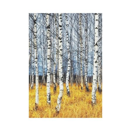 MYPOP Autumn Birch Tree Grove Garden Flag Outdoor Banner 28 x 40 inch