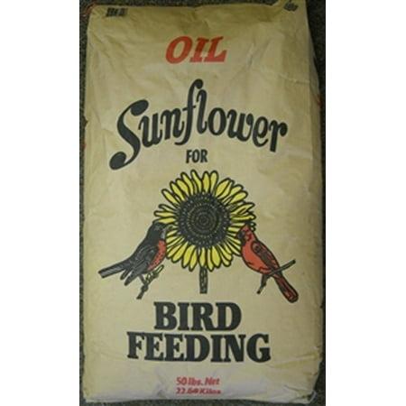 Shafer Black Oil Bird Feed - 50 Lbs.