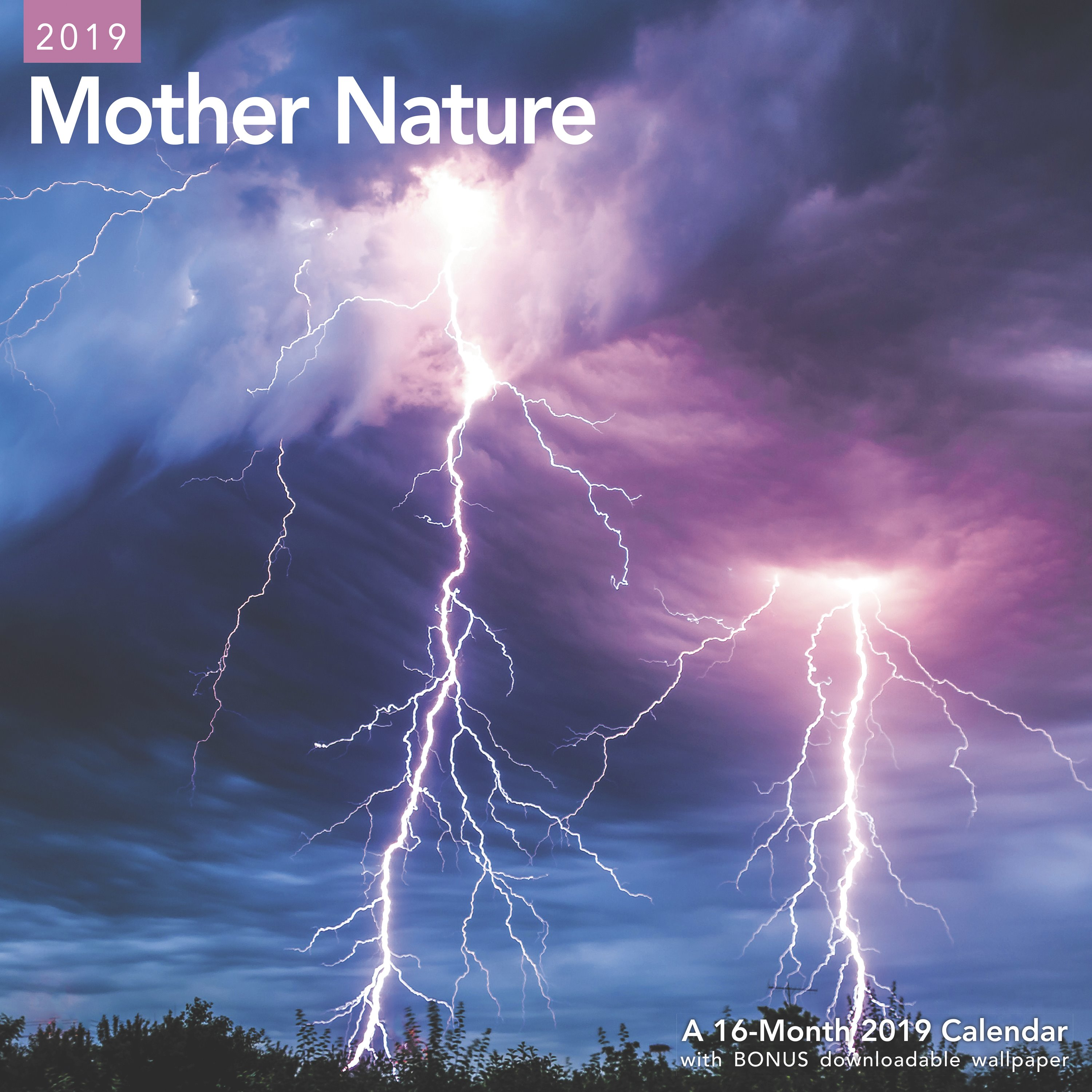 """Mead® Mother Nature 2019 Monthly Wall Calendar, 12"""" x 12"""""""
