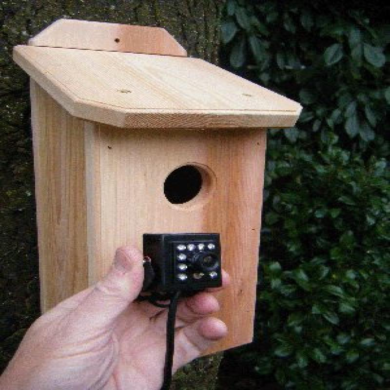 HD Northwoods Cedar Birdhouse by Bird Houses