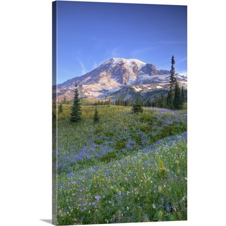 Great BIG Canvas | Jamie and Judy Wild Premium Thick-Wrap Canvas entitled Washington, Mt. Rainier and wildflowers at Mazama