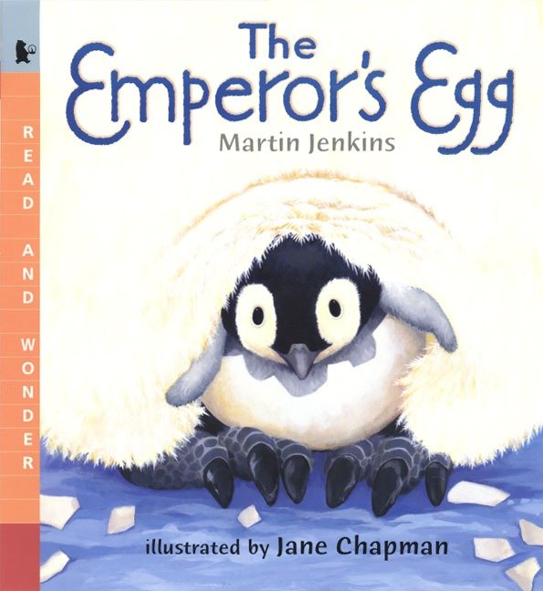 The Emperor's Egg : Read and Wonder