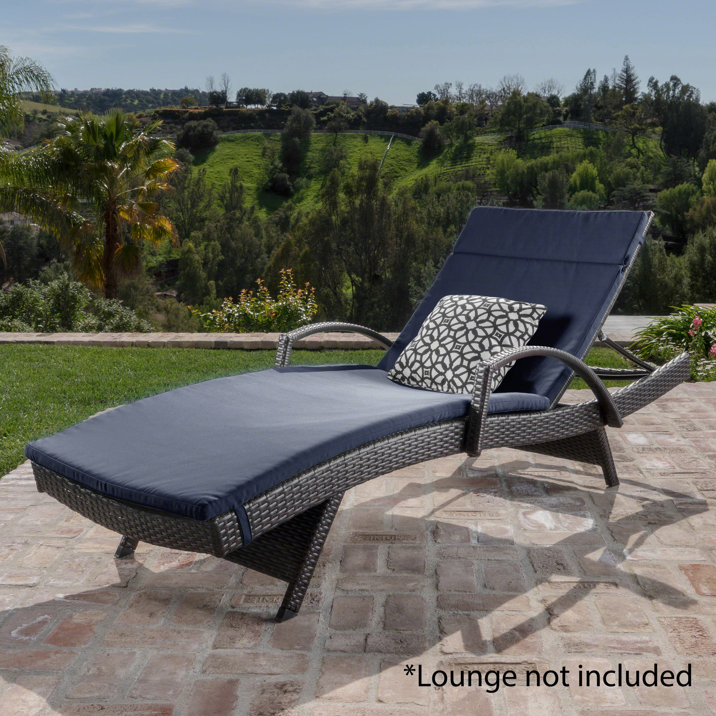 Anthony outdoor chaise lounge cushion navy blue