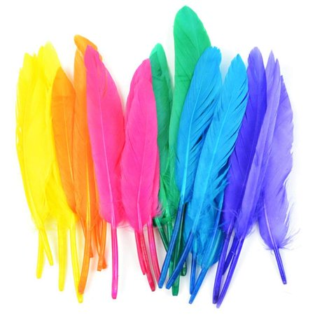 Duck Quill Feathers 24/Pkg-Bright Mix