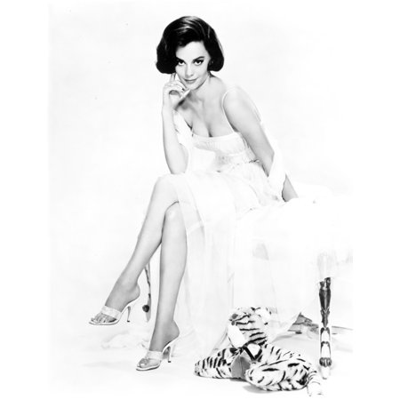 Natalie Wood Seated in White Dress and Stuffed Tiger Photo Print