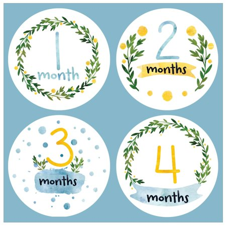 Baby Monthly Stickers In Watercolors   Baby Milestone Onesie Stickers   1 12 Months   Pinkie Penguin
