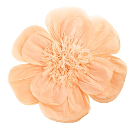 Paper Scalloped Magnolia Wall Flower, Peach, -