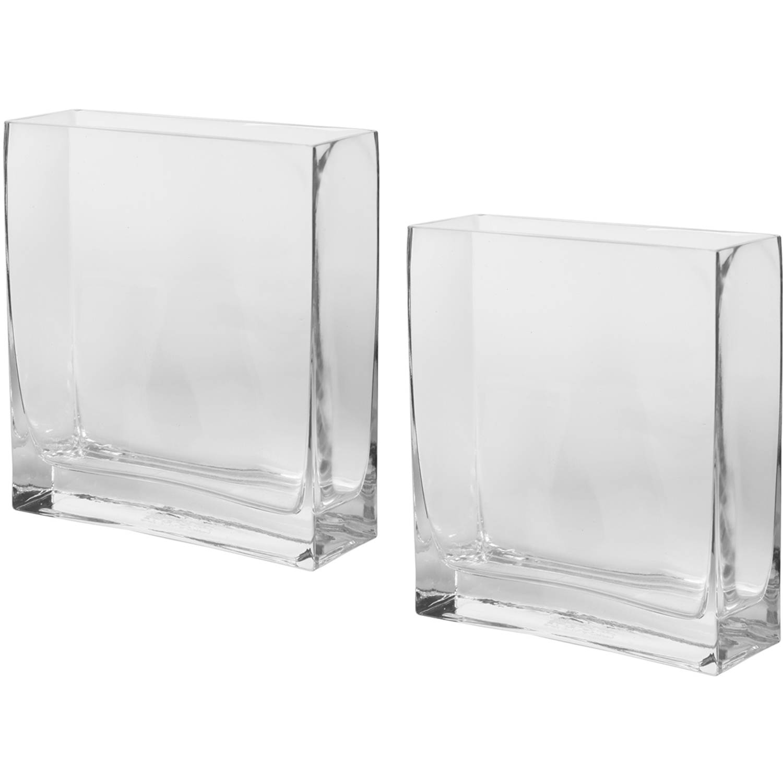 Elegant Expressions Set of 2 Glass Rectangle Vase by