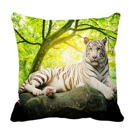 PHFZK Animal Pillow Case, White Tiger with Green Tree Landscape Nature Scenery Pillowcase Throw Pillow Cushion Cover Two Sides Size 18x18 inches (Tigger Light)