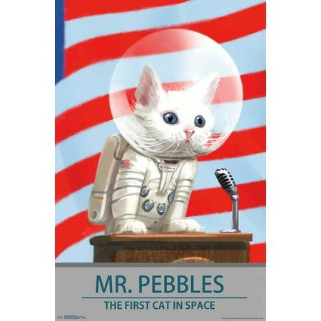 Fallout 4 - Mr Pebbles Poster (Mr Brainwash Posters)
