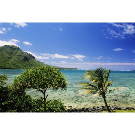Usa Hawaii Oahu Crystal Clear Water And Lush Green Mountains In Distance Kahana Bay Bright Blue Sky Canvas Art   Robert Sablan  Design Pics  34 X 22