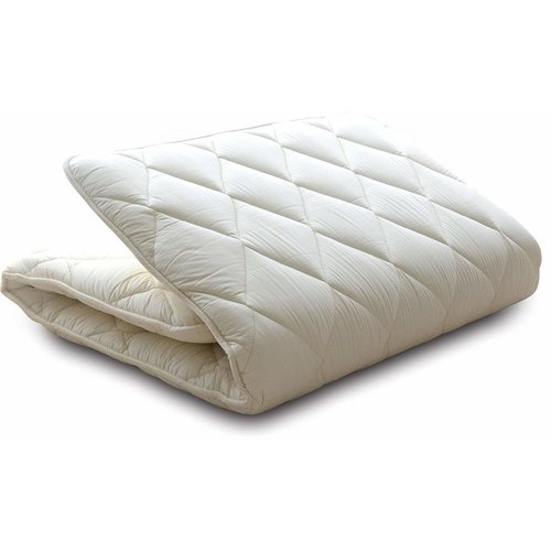 Alwyn Home Merrick 3'' Cotton Twin Size Futon Mattress