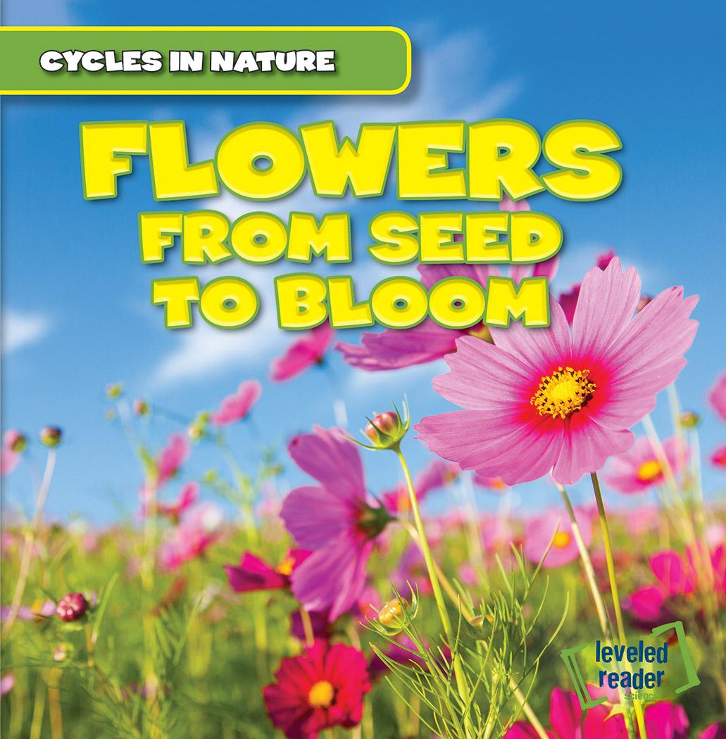 Flowers : From Seed to Bloom