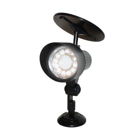 Ecothink 155026 12 LED Outdoor Motion Activated Solar LightEcothink 155026 12 LED Outdoor Motion Activated Solar Light  . Outdoor White Lights Walmart. Home Design Ideas