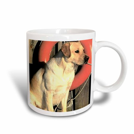 3dRose Yellow Labrador Lab, Ceramic Mug, 11-ounce
