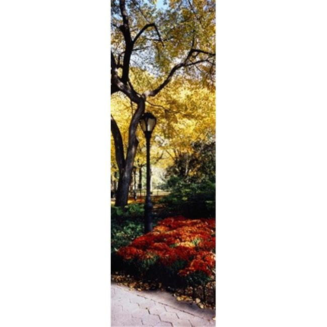 Central Park Manhattan: Panoramic Images PPI95577L Lamppost In A Park Central Park