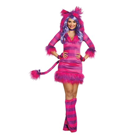 Dreamgirl Women's Colorful Magic Cat Storybook Costume Dress](Cat Whiskers Costume)