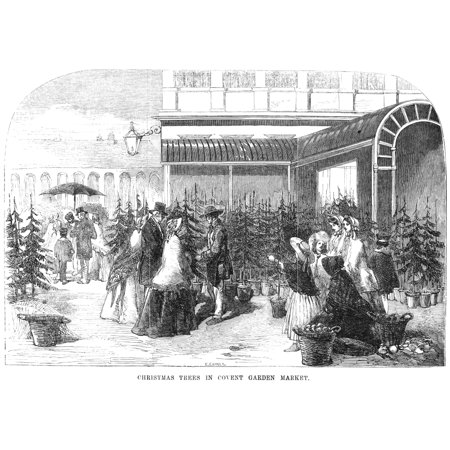 Christmas Tree Market NChristmas Trees In Covent Garden Market Wood Engraving English 1854 Poster Print by Granger Collection ()