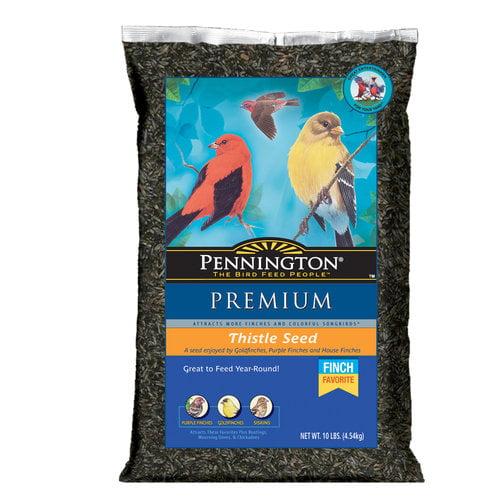 Pennington Premium Thistle Seed Wild Bird Feed, 10 lbs
