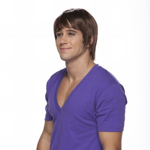 Characters Surfer Dude Synthetic Wig - Brown