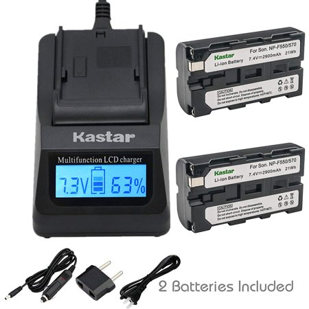 Kastar NP-F570 Battery (2-Pack) and Ultra Fast Charger Kit for Sony L Series InfoLithium Battery NP-F570, NP-F550, NP-F530, NP-F330 and Sony DCRVX2100, HDRFX1, HD1000U, HVRZ1U, HXR-NX5U, NEX-FS100 (Sony Fs100)