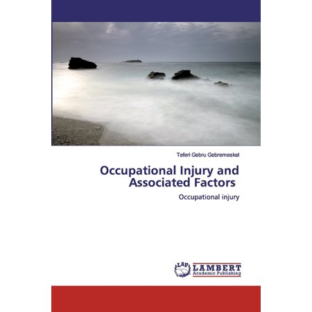 Occupational Injury and Associated Factors (Paperback)