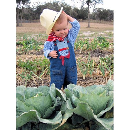 Peel-n-Stick Poster of Childhood Child Cute Farmer Cowgirl Hat Cabbage  Poster 24x16 Adhesive Sticker Poster Print - Walmart.com a85cd69e6ae1