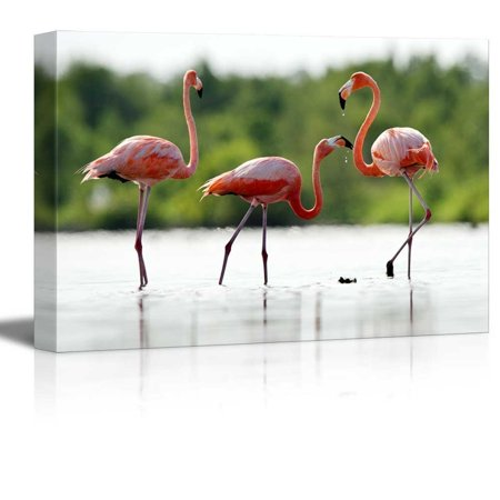 Canvas Prints Wall Art - The Pink Caribbean Flamingo on Water | Modern Home Deoration/Wall Decor Giclee Printing Wrapped Canvas Art Ready to Hang - 24