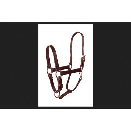 Hamilton Leather Halter (Hamilton Brown Leather Halter For Horse)