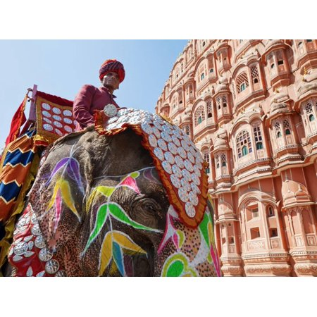 - India, Rajasthan, Jaipur, Ceremonial Decorated Elephant Outside the Hawa Mahal, Palace of the Winds Print Wall Art By Gavin Hellier