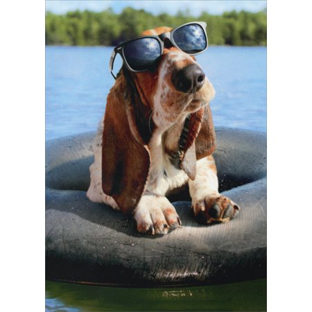 Avanti Press Basset Hound Wearing Sunglasses Funny Dog Birthday Card