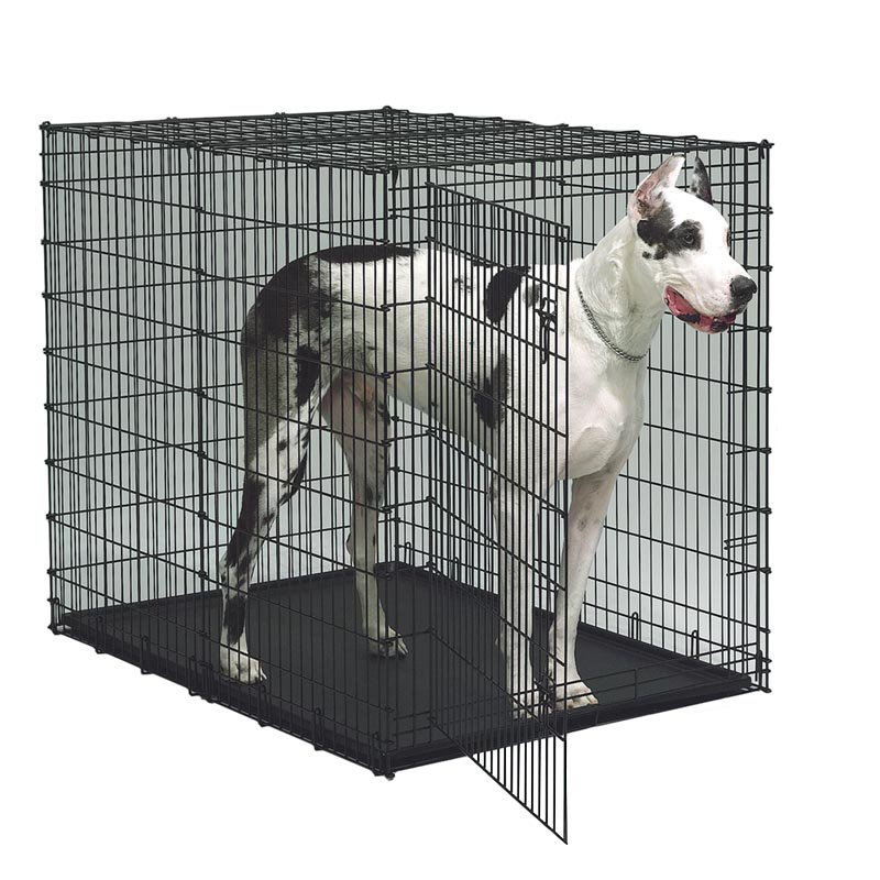 Midwest Starter Series 54 in. Single Door Dog Crate with Pan