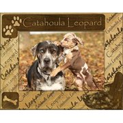 Giftworks Plus DBA0046 Catahoula Leopard, Alder Wood Frame, 4 x 6 In